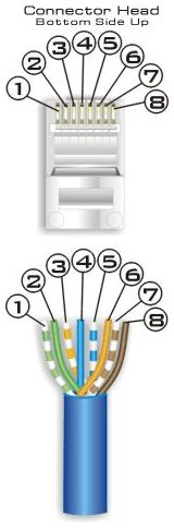 Wiring Diagram on Cat 5 Wiring Diagram